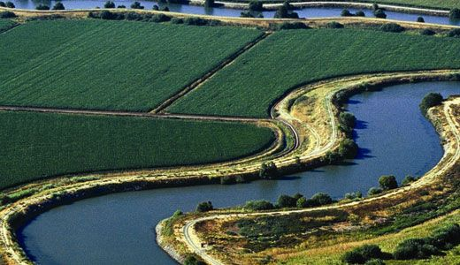 Gas Prices San Diego >> Feds Launch Delta Land Grab | CalWatchdog.com