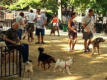 220px-Tompkins_Square_Big_Dog_Run