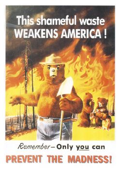 Smokey the Bear - madness
