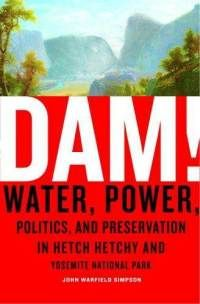 Dam water power book cover