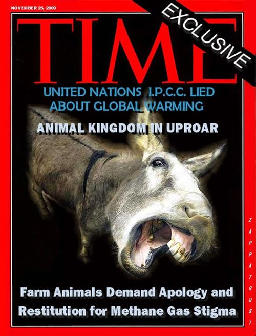 Animal-Kingdom-in-Uproar