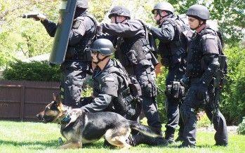 SWATs Gone Wild
