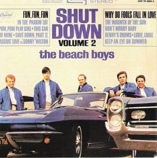 Shutdown beach boys