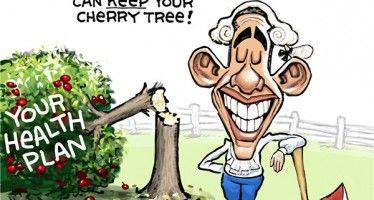 Obama's cherry tree