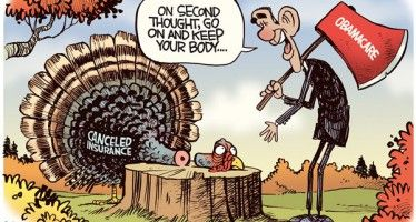 Obamacare turkey