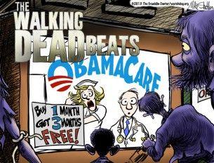 Shelton, Obamacare, Nov. 22, 2013