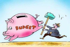 budget, constantin, cagle, Nov. 26, 2013