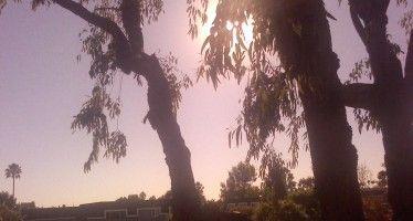 California's annoying warmth and sunshine