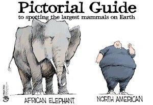 obesity, north american, Cagle, Dec. 10, 2013