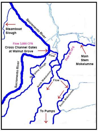 Cross-Channel-Gates-Area-w-Flow
