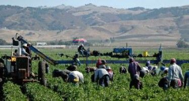 Farmworker overtime passes easy test in Senate, faces challenge in Assembly