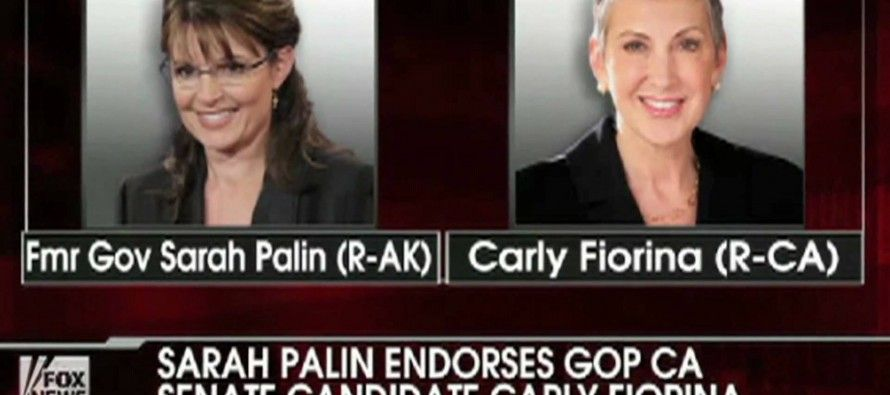 Dems vs. 'Grizzly Mom' Palin