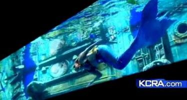 Mermaid Bar Floats Rebuttal