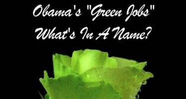 Obama's green jobs went up in smoke