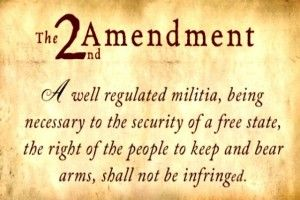 2nd amendment , us govt. picture