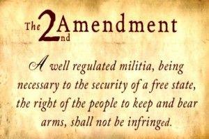2nd amendment , us govt. picture