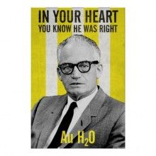 Goldwater 64