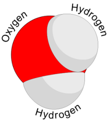 Water_molecule