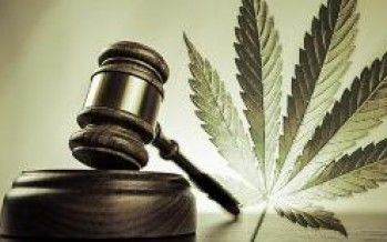 Officials eye statewide marijuana regs