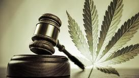 marijuana-gavel
