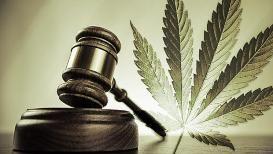 marijuana-gavel