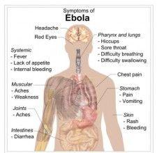 Ebola symptoms, wikimedia