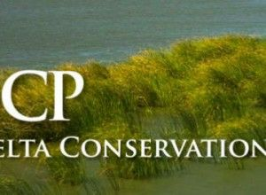 bay delta conservation