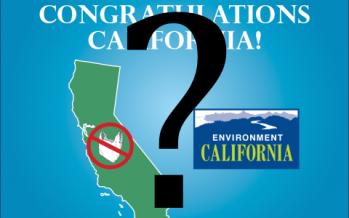 CA bag ban initiative heading toward 2016 vote