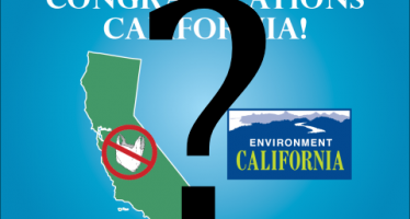 CA bag ban initiative heading toward 2016 vote