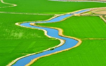 Deal to send rice water to SoCal could dry up before summer