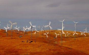 Unions, environmentalists clash over wind farm