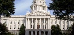 Democratic Party faces restive CA activists
