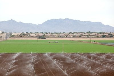 Farmers in Imperial County rely heavily on Colorado River supplies for irrigation.