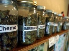 New proposal would provide banking access for cannabis industry