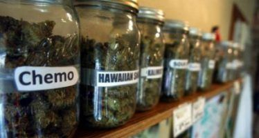 CA considers state pot bank