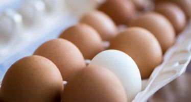 CA egg prices skyrocket