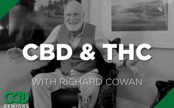 Is It A Good Idea To Combine CBD and THC?