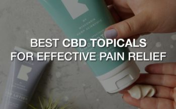 Best CBD Topicals For Effective Pain Relief