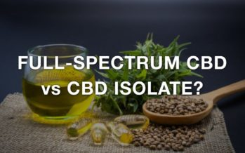 Full-Spectrum CBD or CBD Isolate?